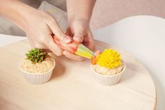 Confectioner decorates  cupcake. A close-up of a confectioner`s woman decorates with a pastry syringe  a cupcake made from natural products with a sweet cream of Royalty Free Stock Photo