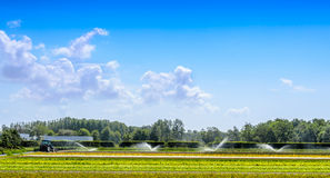 Irrigation of fields in the Netherlands Royalty Free Stock Photography