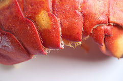 Cooked Lobster Tail Stock Photos