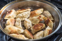 Close up cooking fried dumplings in a frying pan. Chinese food with hot steams. Close up cooking fried dumplings in a frying pan. Chinese food with hot steams Stock Images