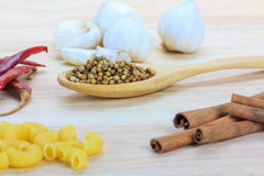 Close up coriander seeds on wooden spoon Royalty Free Stock Photos