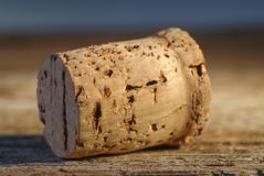 Close up of a Cork. Stock Images