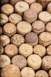 Close up of a cork wine Royalty Free Stock Image