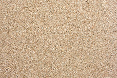 Close up of corkboard background texture. Stock Image