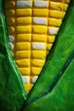 Close up corn Royalty Free Stock Photo