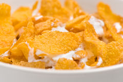 Close up of corn flakes and milk Stock Photo
