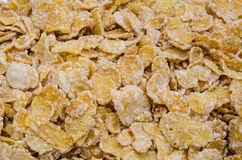 Close up of corn flakes Royalty Free Stock Photo