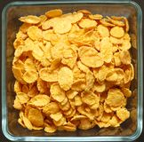 Close up of cornflakes. Children's breakfast:  heap of cornflakes on plate Royalty Free Stock Image