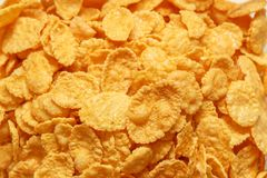 Close up of cornflakes. Children's breakfast:  heap of cornflakes on plate Royalty Free Stock Photos