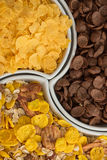 Close up cornflakes Stock Photography