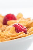 Close up of cornflakes and raspberry. Close uop of cornflakes and raspberry in a white bowl Stock Photography