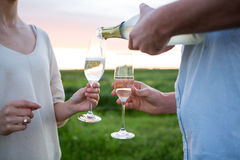 Close-up of couple having champagne in field Stock Images