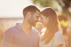 Close-up of couple romancing. At park royalty free stock images