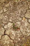 Close up crack clay royalty free stock image