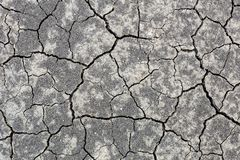 Close-up cracked black earth soil due to hot sumer without rain. Arid season, agrucultural disaster. Global warming up stock photo