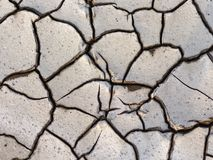 Close-up of a cracked dry earth. View from above stock photo