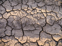 Close-up Cracked Dry Ground Stock Images