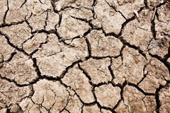 Close up of cracked earth Stock Image