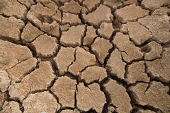 Close up cracked earth. Royalty Free Stock Photo