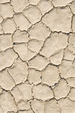 Close up of cracked ground Stock Image