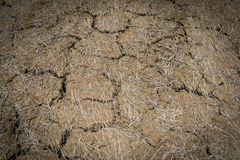 Close up of the cracked ground, dry soil texture Royalty Free Stock Image
