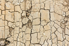 Close up of cracked soil Stock Photography