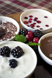 Close-up cream dessert with berries in white porce. Close-up cream dessert with chocolate and berries in white porcelain bowls on wooden plate with ceramics Royalty Free Stock Photography