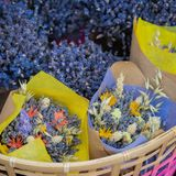 Close-up of creative bouquets of fresh lavender flowers in wicker basket, flower shop, studio. Delivery of flowers Stock Images