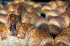 Close Up Croissants. Macro Close Up of Croissants on Tray Royalty Free Stock Photos