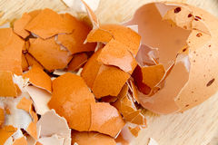 Close up of crushed egg shells shattered on the wooden floor. Royalty Free Stock Photos