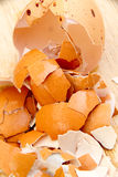 Close up of crushed egg shells shattered on the wooden floor. Stock Image