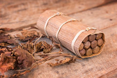 Close up of a cuban handmade box of cigars with dried tobacco leaves Royalty Free Stock Photo