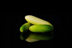 Close up Cucumber on black Royalty Free Stock Photo