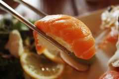 Close-up, Cuisine, Delicious Royalty Free Stock Photos