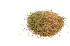 Close up of cumin seeds Stock Photography