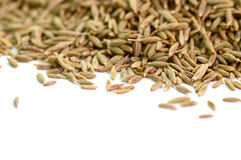 Close up of cumin seeds Royalty Free Stock Photo