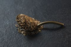 Cumin seeds in spoon on black background Stock Images