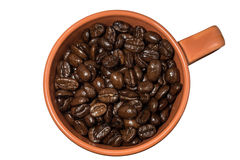 Close-up cup with coffee beans isolated. On white background Stock Image