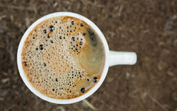 Close-up cup of fresh coffee Royalty Free Stock Image