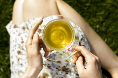 Close up on cup of tea in the hands of young woman Royalty Free Stock Image