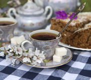 Close up of cup of tea with home cake Royalty Free Stock Photos