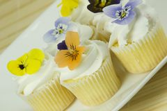 Close up of cupcakes Stock Images