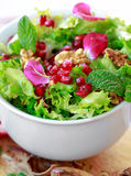 Close up of curly endive salad with pomegranate, nuts... Stock Images