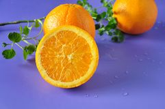 Close up Cut Half of Navel Orange Royalty Free Stock Image