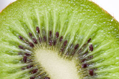 Close-up of cut kiwi Stock Image