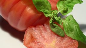 Close-up of cut tomato with basil. 4K Ultra HD video stock video