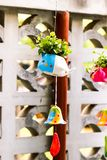 Closeup of cute colorful flowerpot with green leaves royalty free stock photography