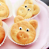 Close Up Cute Pig Cookies on Pink Plate Royalty Free Stock Photos