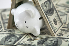 Close up of cute piggy bank lying down Royalty Free Stock Images