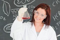 Close up of a cute scientist Royalty Free Stock Images